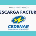 DESCARGAR-FACTURA-CEDENAR