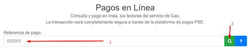 Pagos-en-Linea-Factura-Llanogas