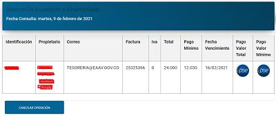 eaav-pagar-factura