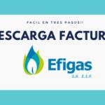 EFIGAS-FACTURA