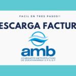 FACTURA-AMB-EN-LINEA